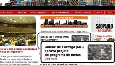 formiga_nossasaopaulo
